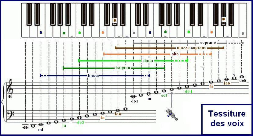 Base de données musique classique